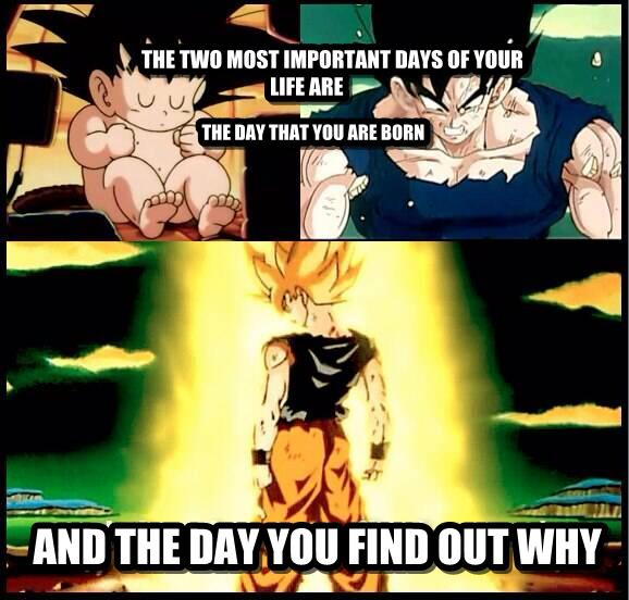Goku's Lessons For Success ::Brian's Mad Ideas